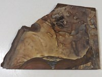 Blue Biggs Jasper Slab