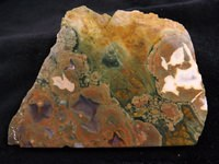 Rainforest Jasper Slab